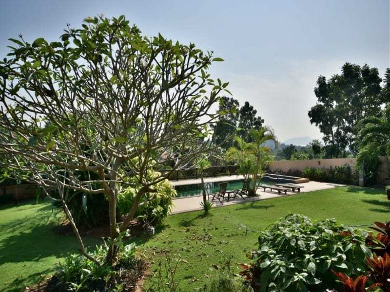 Balinese style villa for sale Dolphin Bay pool tree