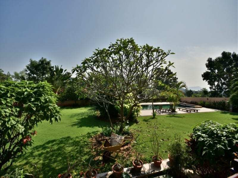 Balinese style villa for sale Dolphin Bay tree